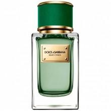 Dolce&Gabbana Velvet Cypress
